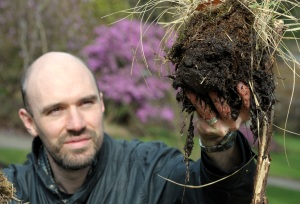 mark with peat