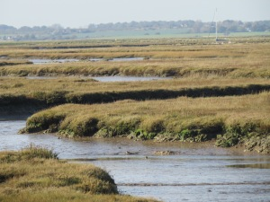 Stone Marsh, the Naze - credit Ben Eagle