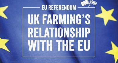 EU-report-cover-600