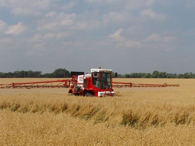 Spraying_oats_near_Boveney_Lock_-_geograph.org.uk_-_897466