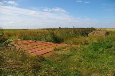 St_Osyth_Marsh_-_geograph.org.uk_-_537559