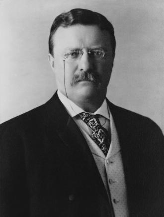 president_theodore_roosevelt_1904