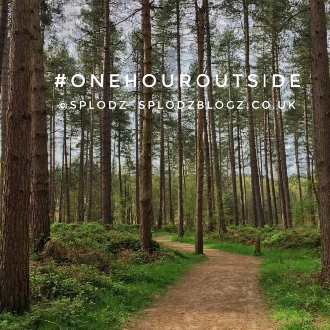 OneHourOutside03.jpg