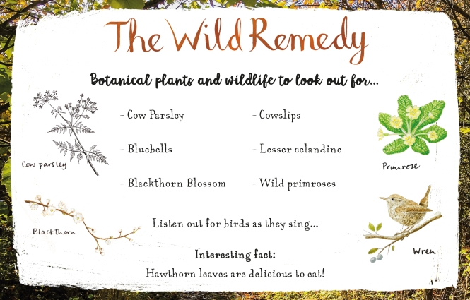 Wild Remedy blog tour helpful guide
