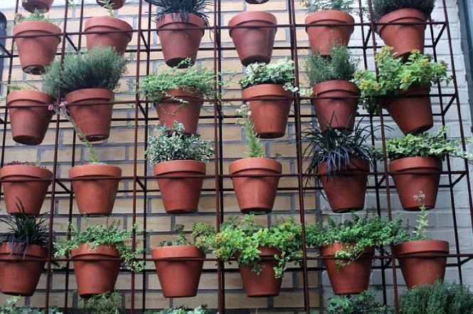 start with a garden