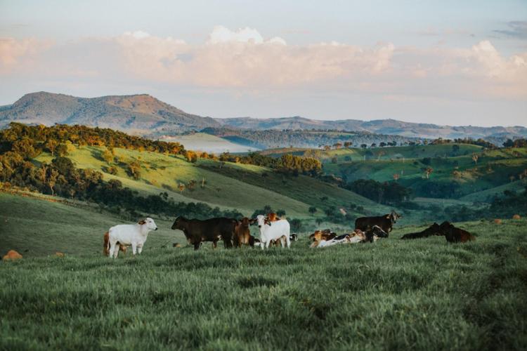 Farm tourism pic 2
