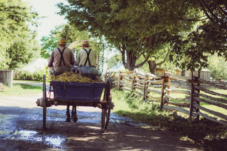Farm tourism pic 7